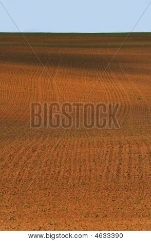 Ploughed Field In Spring Against Blue Sky