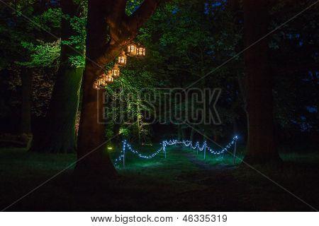 Sendero de luz mágica de la noche en el viejo parque