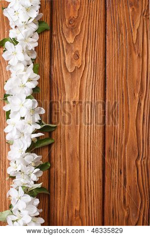 Floral wooden frame decorated with flowers apple tree