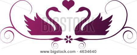 poster of Vector ornament of two swans with heart and swirls.