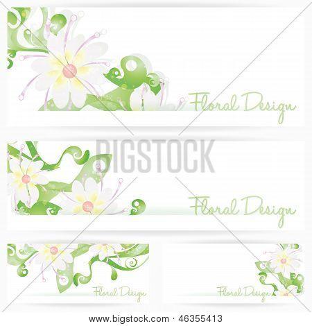 Flower vector background brochure. Floral cards
