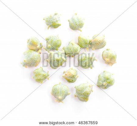 Cypress nuts.