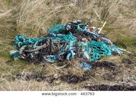 Seaside Pollution