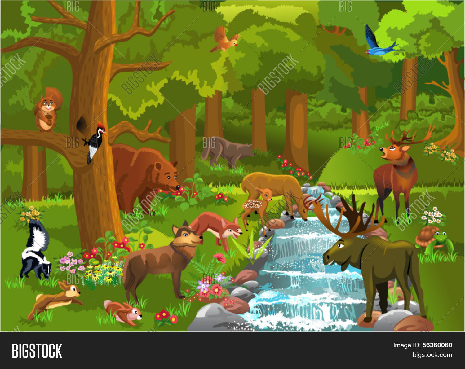 All pictures of wild animals in the forest