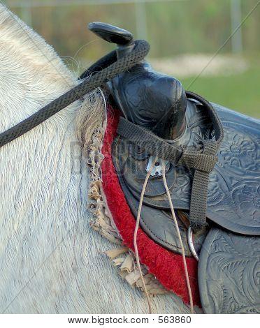Horse_saddle2_5248