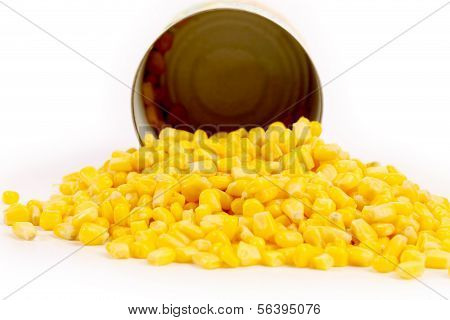 Opened cans and pilr of corn.