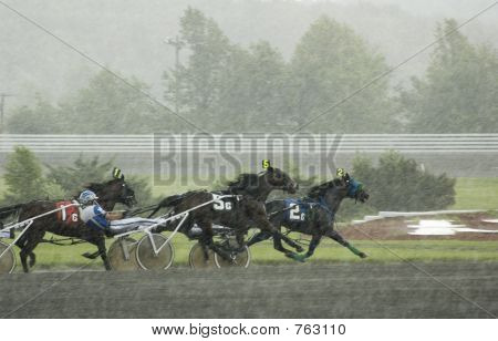 harness race-7