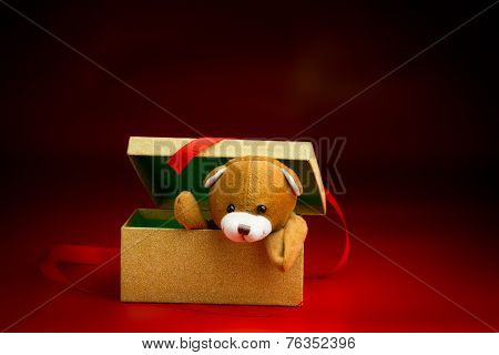 Christmas Teddy Popping Out Of A Gift Box