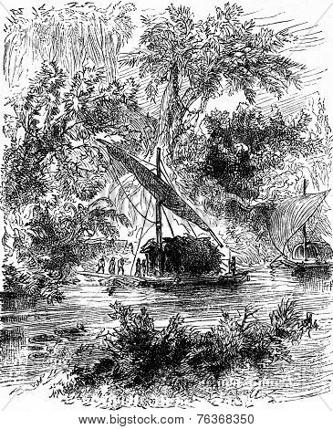 The Young Creole Was Conducted There, Vintage Engraving.