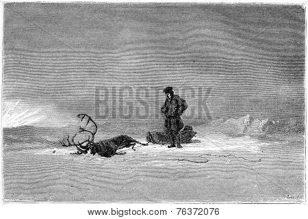 "1866 Painting in a Salon called ""Winter in Lapland"" showing a traveller looking over his dead reindeer vintage engraved illustration. Magasin Pittoresque - 1867 poster"