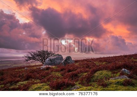 sunrise with pink purple orange clouds at Caradon Hill, Cornwall, UK