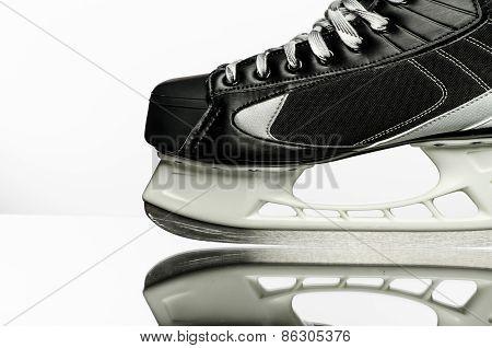 Hockey skate on white