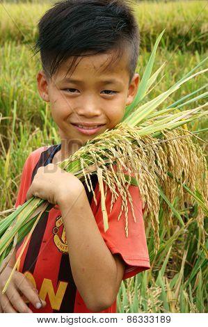 Asia Children, Rice Field