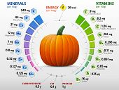 Infographics about nutrients in winter squash. Qualitative vector illustration about pumpkin vitamins vegetables health food nutrients diet etc. It has transparency blending modes gradients poster