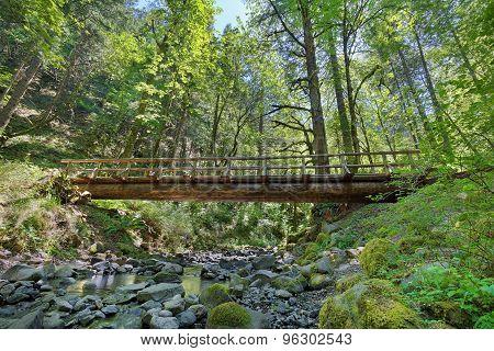 Wood Log Bridge Structure Over Gorton Creek