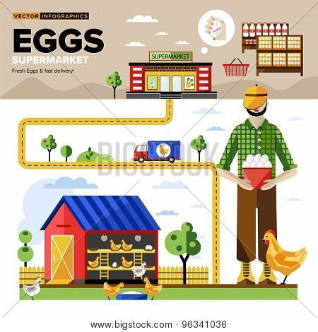 Poultry farm. Poultry processing. Chicken farm. Poultry. Poultry farm infographics. From chicken farm to the store. Poultry illustration. Poultry vector. Egg production. Farmer on poultry farm. Egg. Farmers food.