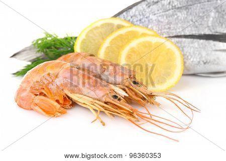 Fresh dorado fish with shrimps, dill and lemon isolated on white
