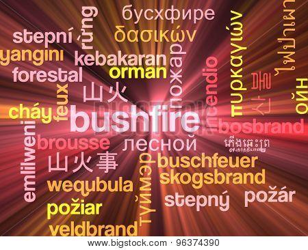 Background concept wordcloud multilanguage international many language illustration of bushfire glowing light