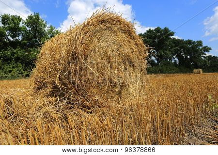 Hayrolls on crop field at summer time