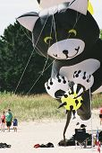 giant kitty cat kite towers over people on the beach poster
