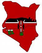 Detailed and colorful illustration of kenya black rhino poster