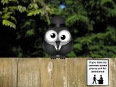 Comical help desk sign for those with no common sense with bewildered bird perched on a timber garden fence against a foliage background poster