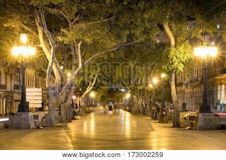 The Prado Boulevard in downtown Havana illuminated at night