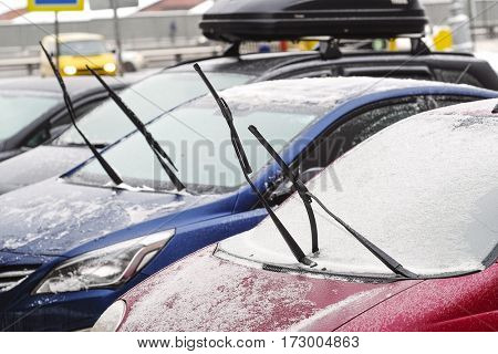 Frozen cars on a parking close up