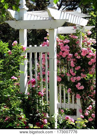 Wooden Archway as a Beautiful Architectural Garden Element