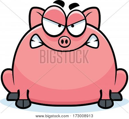 Mad Little Pig