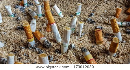 Cigarette butts in the ashtray, with sand.