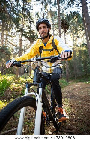 Male biker cycling in countryside forest