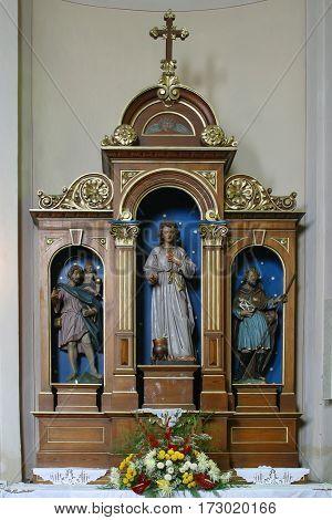 SCITARJEVO, CROATIA - AUGUST 23: Saint Vitus altar in the Parish Church of Saint Martin in Scitarjevo, Croatia on August 23, 2011.