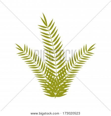 green branch with multiple leaves vector illustration