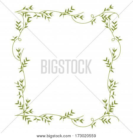 frame with green creepers nature design vector illustration