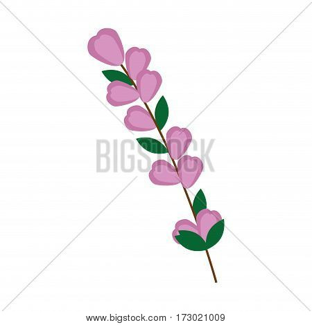 color Silhouette flowers with oval leaves and ramifications vector illustration