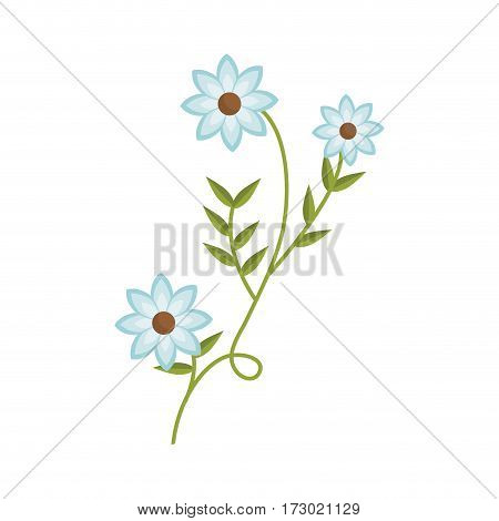 plant with ramification and blue flowers vector illustration