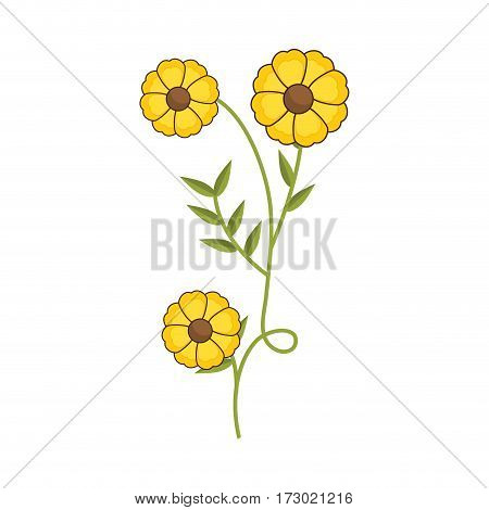 plant with ramification and yellow flowers vector illustration
