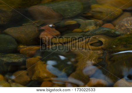 river pebble of different color and form under water degradation