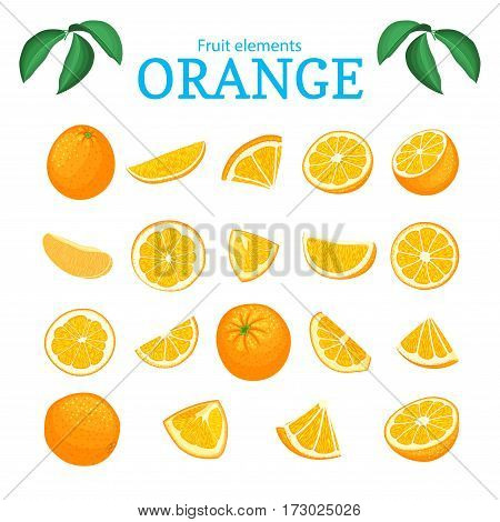 Vector set of ripe tropical orange fruits. Oranges peeled, piece of half slice leaf. Collection of delicious citrus orange designer elements for packaging of juice breakfast health food