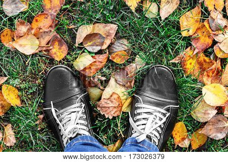 Feet Man walking on fall yellow leaves. Lifestyle Fashion and trendy style. Advertising shoes. Autumn collection. Walk in autumn Park in rainy weather. Retro and vintage design. Close up view.