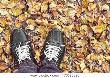 Feet Man walking on fall yellow leaves. Lifestyle, Fashion and trendy style. Advertising shoes. Autumn collection. Walk in autumn Park in rainy weather. Retro and vintage design. Close up view.