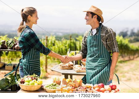 Farmer couple shaking hands with each other at local market