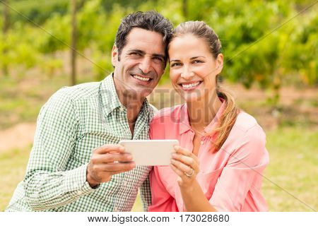 Portrait of happy couple holding mobile phone in vineyard
