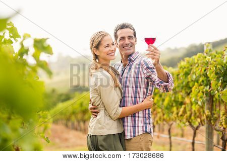 Happy couple looking at glass of wine in vineyard