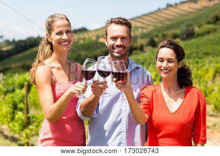 Portrait of happy friends toasting glasses of wine in the vineyard