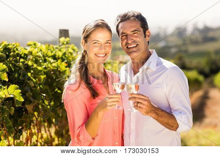Portrait of happy couple toasting glasses of wine in vineyard