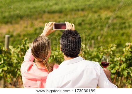 Couple taking a selfie in vineyard