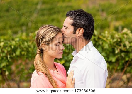 Happy couple embracing each other in vineyard
