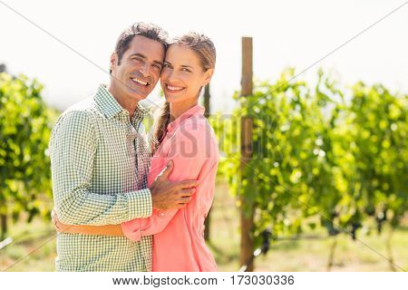 Portrait of happy couple embracing each other in vineyard
